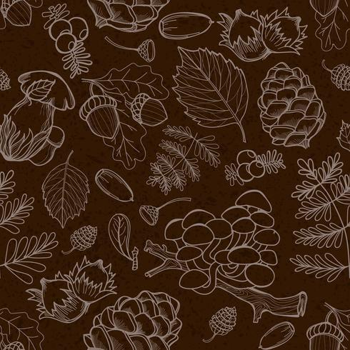 Elementos silvestres de la naturaleza, setas, brotes, plantas, bellotas, hojas.