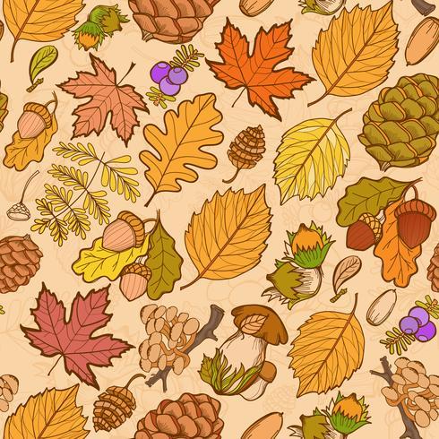 Elementos selvagens da cor sem emenda da natureza, cogumelos, brotos, plantas, bolotas, folhas.