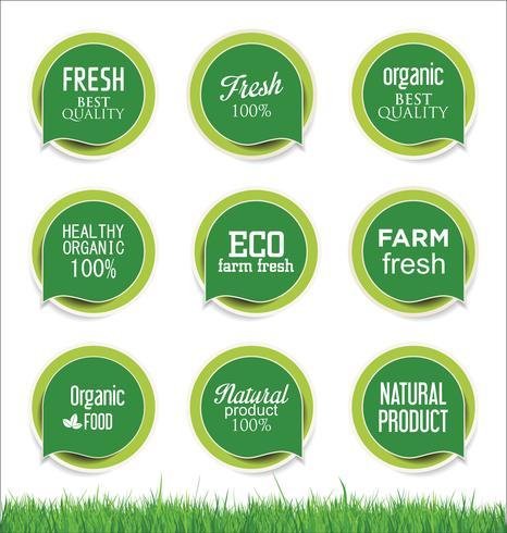 Ensemble de modèles Eco Vintage Labels Bio Design rétro écologie