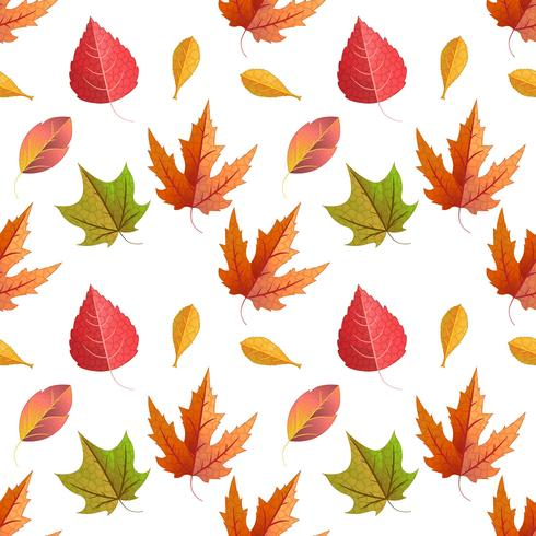 Vettore senza soluzione di continuità con le foglie d'acero in autunno