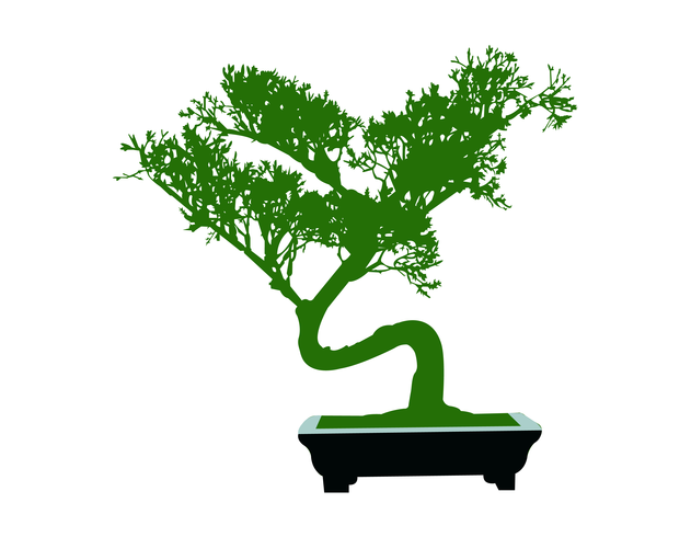 Japanse bonsai miniatuur boom cartoon vector