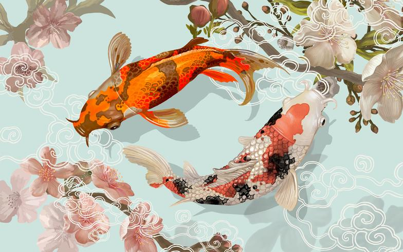 45 Traditional Japanese Koi Fish Tattoo Meaning Designs: Two Japanese Koi Fish Swimming