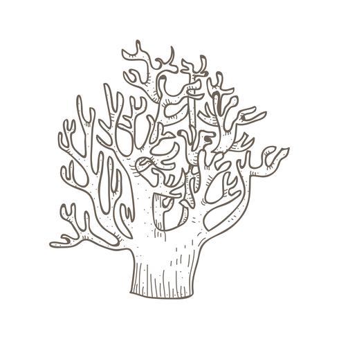 Vecteur de champignon