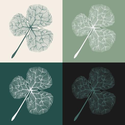 Insieme dell'illustrazione delle foglie del trifoglio
