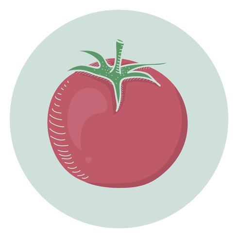 Vector of a tomato