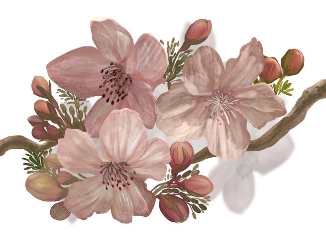 Sakura en fleurs dessinées à la main sur une branche