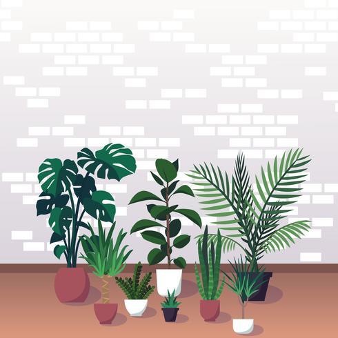 Diverse sierhomeplants op bakstenen muurachtergrond, vectorillustratie.