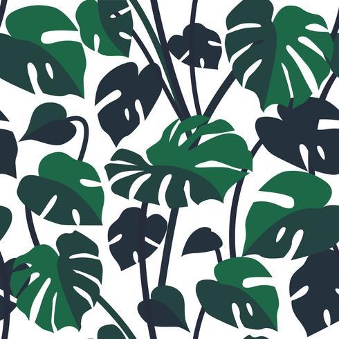 Vector il modello senza cuciture con le foglie di monstera, pianta del filodendro.