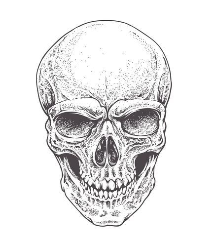 Crânio de Dotwork