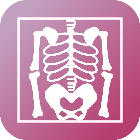Skelet plat multi kleur