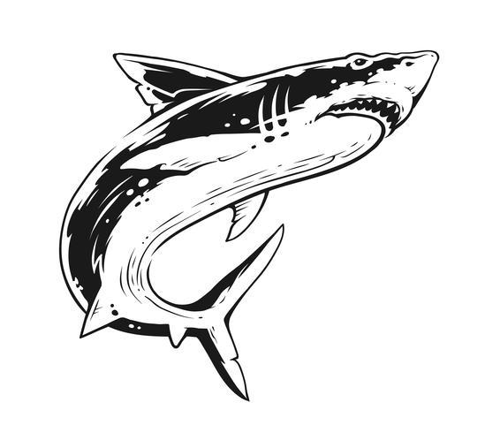 Tubarão preto e branco Contraste Vector Art