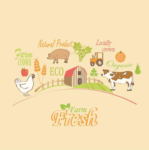 Organic and farm, vector concept.