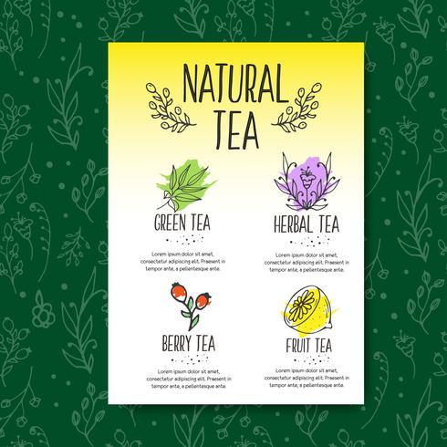 Folleto de menú de té de hierbas. Hierbas orgánicas y flores silvestres. Mano bosquejó frutas y bayas ilustración.