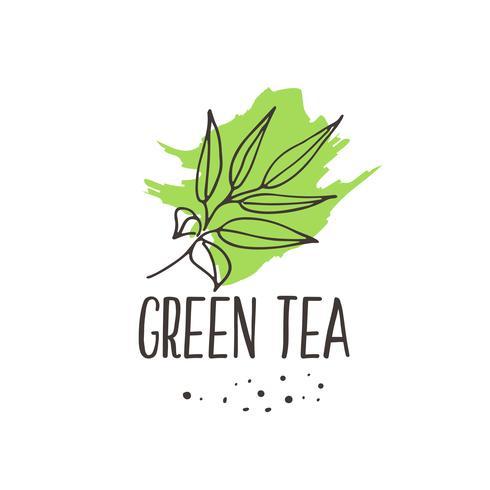 Green Tea Print Download Free Vectors Clipart Graphics Vector Art