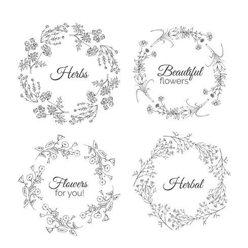 Illustration d'herbes. Cadres floraux.