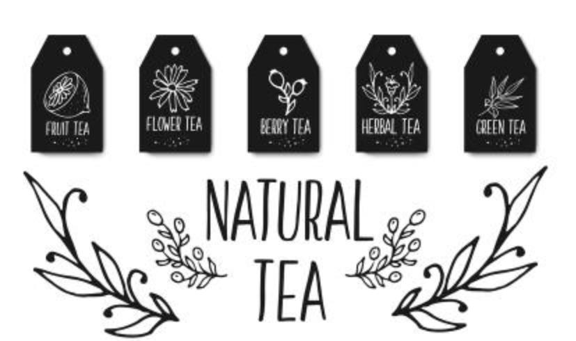 Collezione di etichette di tè alle erbe. Erbe biologiche e fiori selvatici. Illustrazione delle bacche di frutti schizzata mano.