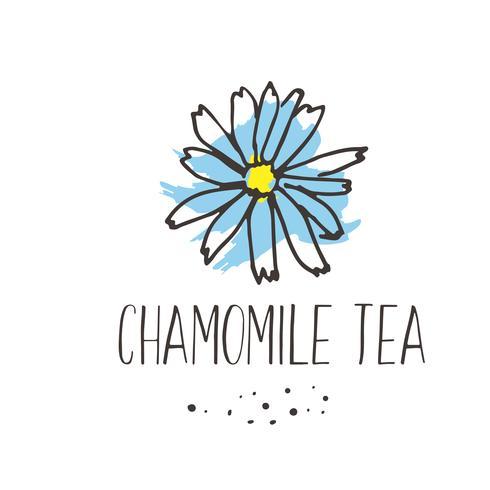 Impressão de chá de camomila. Projeto erval orgânico do pakage das bebidas quentes. A mão esboçou o collecton da ilustração das ervas e das flores.