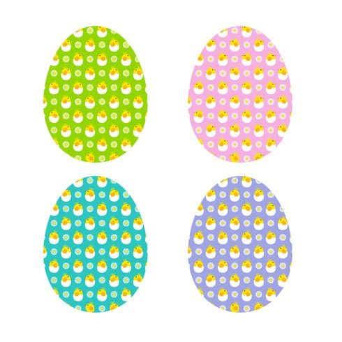 hatching chicks and daisies eggs vector