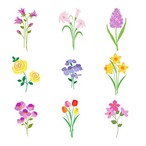 Flores botânicas de primavera mão desenhada