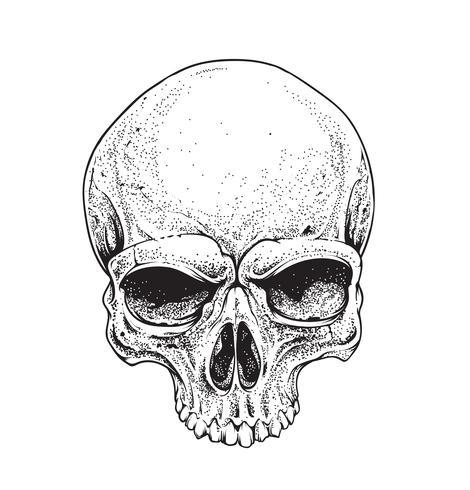cráneo de dotwork