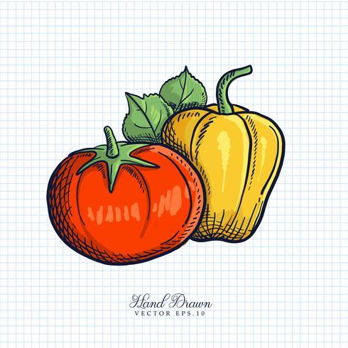 Hand getrokken fruit en plantaardige illustratie