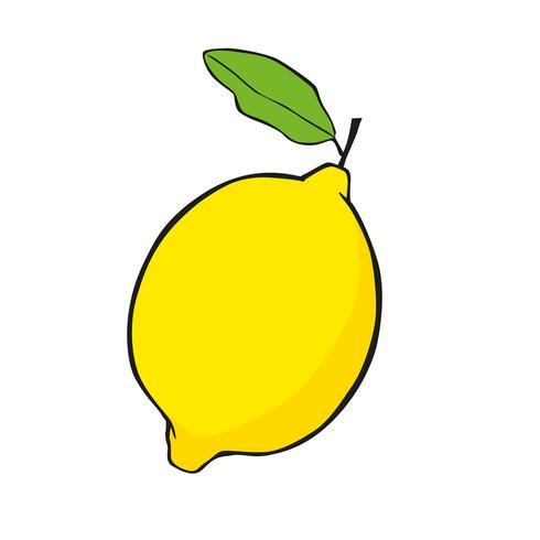 Zitronenvektor-Ikonenillustration