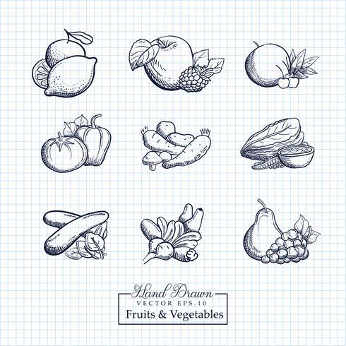 Dibujados a mano ilustración de frutas y verduras