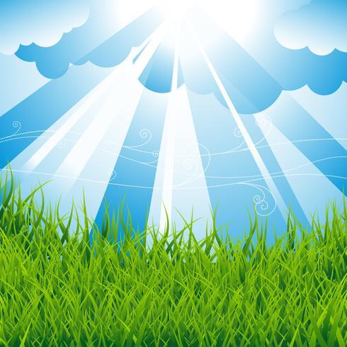 Fondo de primavera con campo verde y cielo azul.
