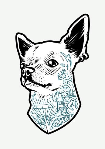 Chihuahua tatuata