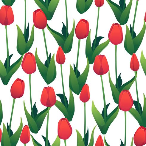 Nahtloses Muster mit roten Tulpen auf weißem Hintergrund.