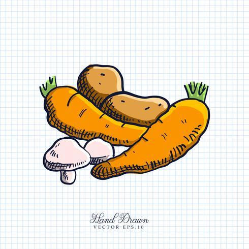 Illustration de légumes dessinés à la main