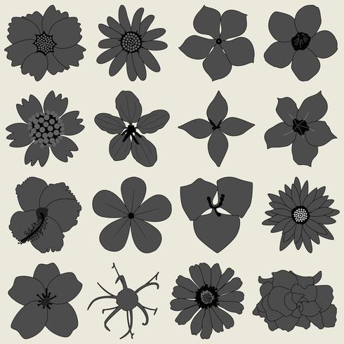 Flower petal flora icon.  vector