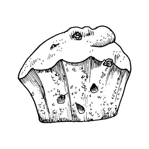 cake met rozijnen en aquarel schets vector