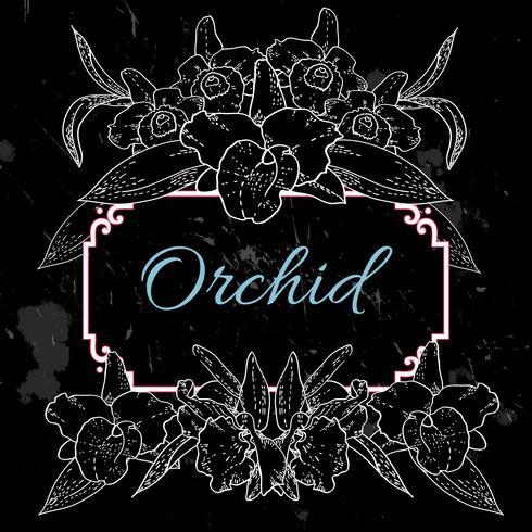 schwarzer Hintergrund mit weißen Orchideen