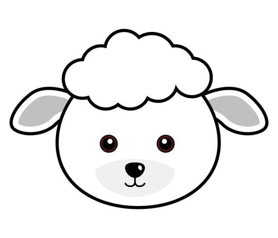 Vector lindo de las ovejas.