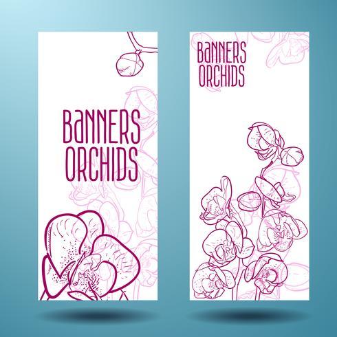 Orchidee sul banner per il design vettore