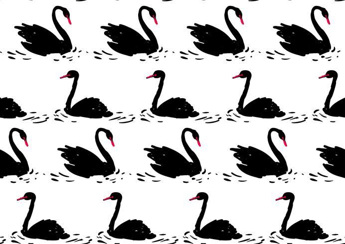 Pareja de cisne negro. Patrón sin costuras