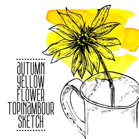 schizzo di topinambour fiore giallo disegnato a mano vettore