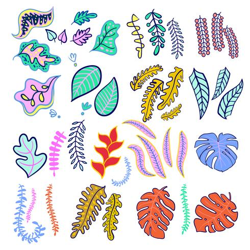 Set of tropical leaf fashionable colors. vector
