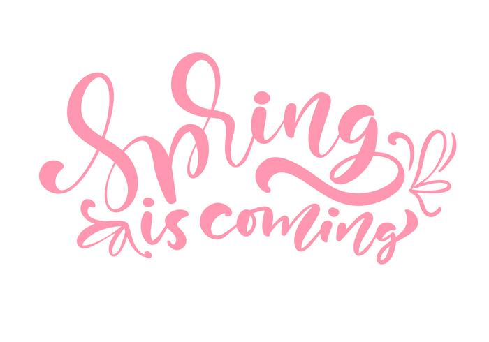 Pink Color Calligraphy lettering phrase Spring Is Coming
