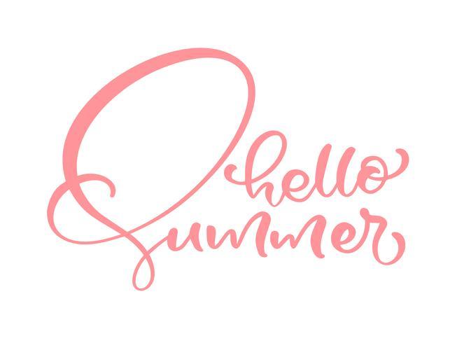 Frase de rotulação de caligrafia Olá Verão. Vector mão desenhada isolado texto.