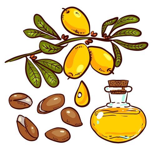 Set of Argan Oil