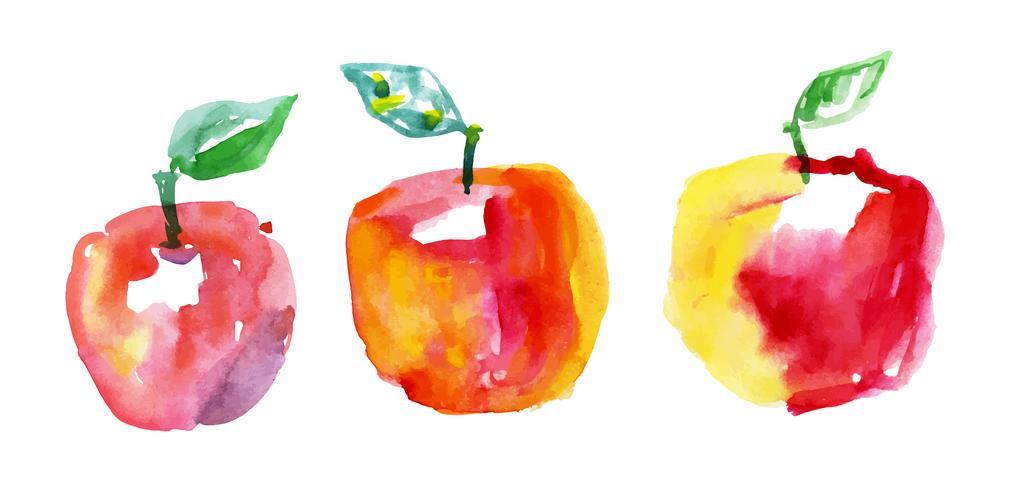 pommes à l'aquarelle