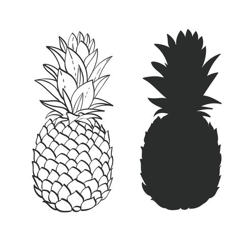 Zwart en wit Pineapple