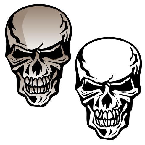 Cráneo humano aislado ilustración vectorial