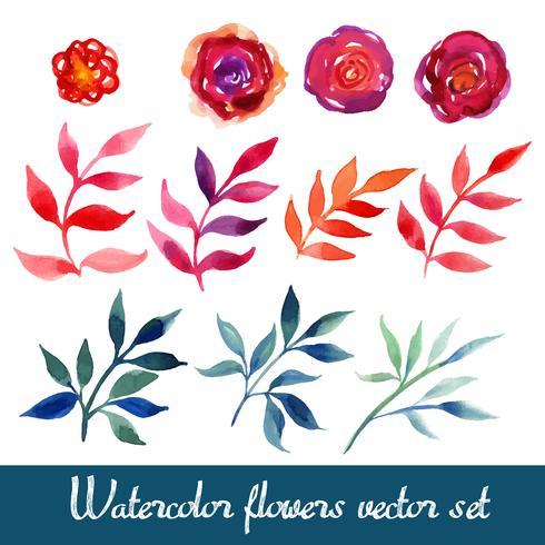 Conjunto de hermosas flores de acuarela vector