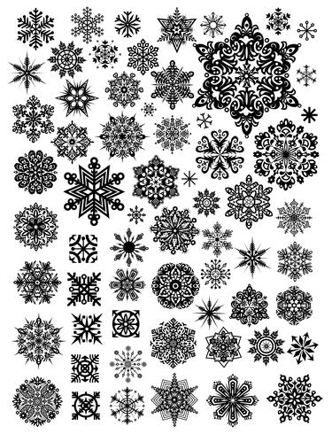 Blossom of snow vector design illustration template