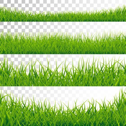 Grenzen des grünen Grases stellten Vektor-Illustration auf transparentem Hintergrund ein.