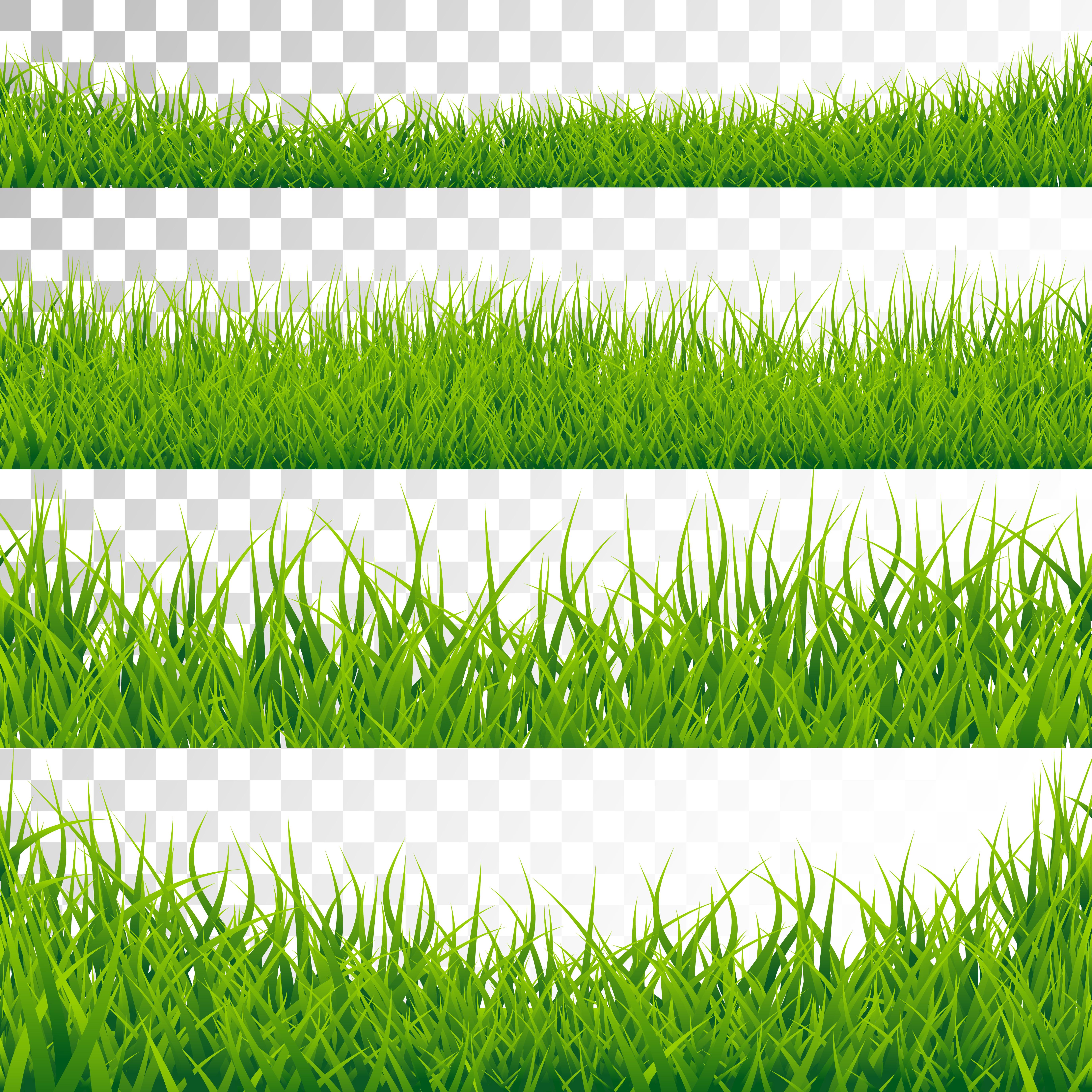 green grass borders set vector illustration on transparent background download free vectors clipart graphics vector art vecteezy
