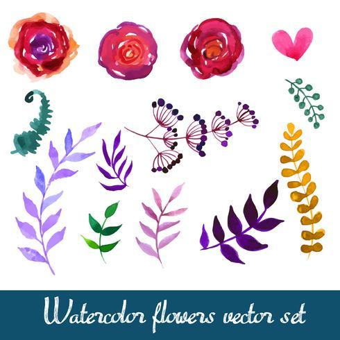 Set of beautiful watercolor flowers vector